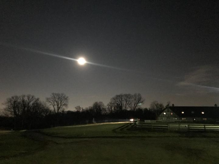 Winter's Night Ride